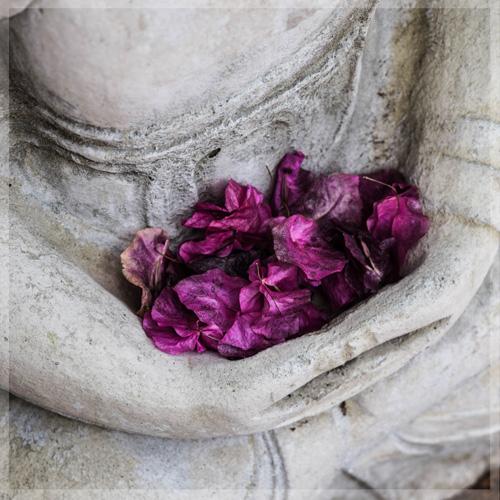 SamsaraYoga-Buddha2
